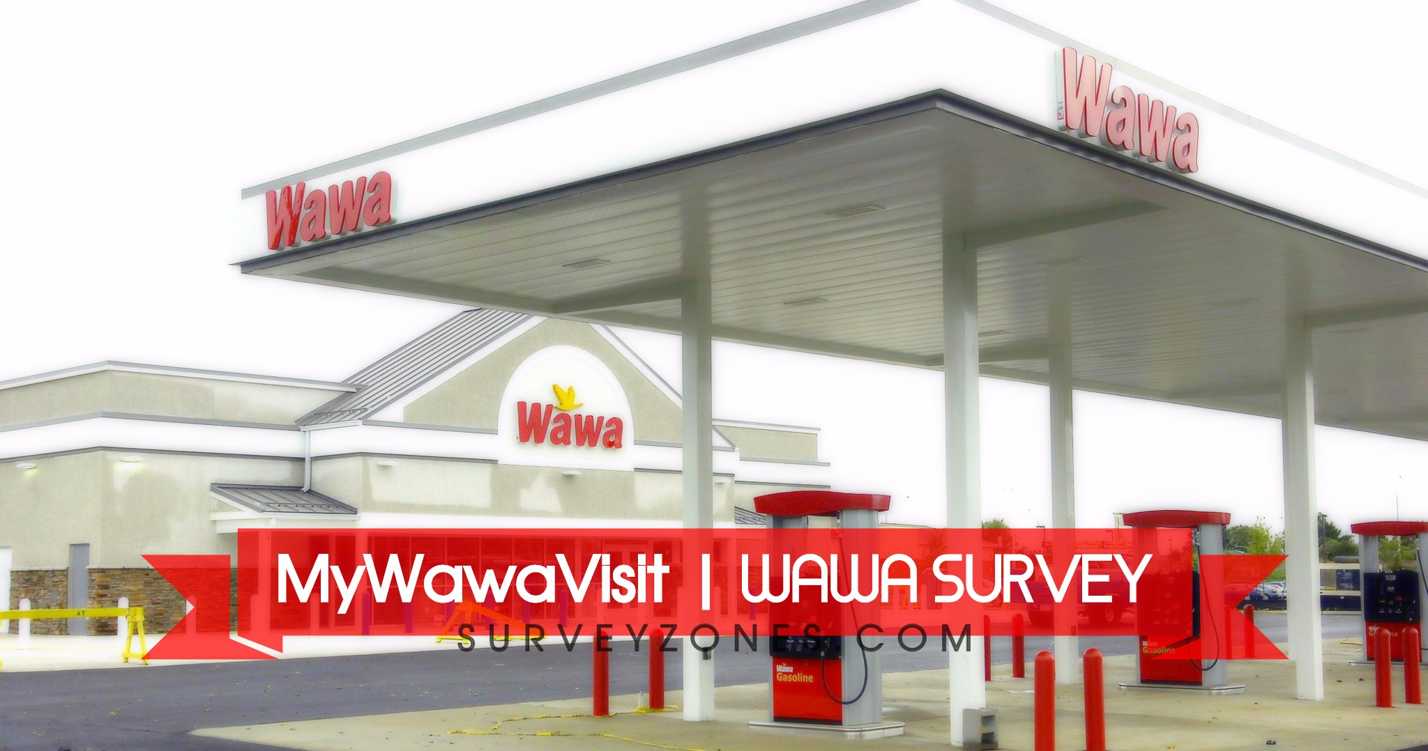 www.mywawavisit.com | Take WAWA SURVEY & Win Wawa $250 Gift Card