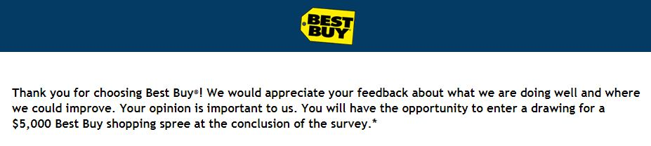Best Buy Survey