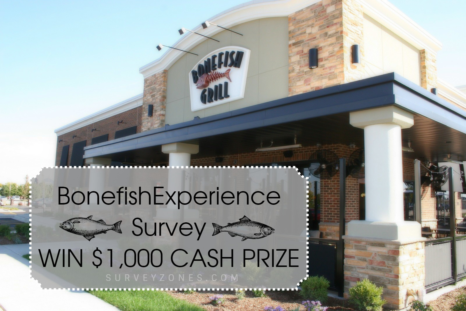 Bonefish Survey Sweepstakes